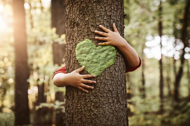 child hugging tree